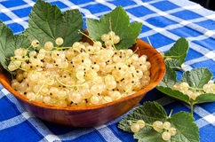 White currant in wooden bowl Stock Images