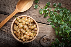 White currant in wooden bowl. Royalty Free Stock Photo