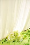 White curtain with green flower. High-key Royalty Free Stock Photo