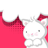 White cute little kitty baby red backdrop Royalty Free Stock Photography