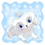 white cute puppy blue background vector illustration
