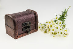 White cutter flower with vintage box.White Background.Top area f Royalty Free Stock Photos