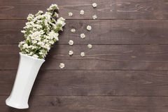 White cutter flowers are in the vase on the wooden background Stock Photography