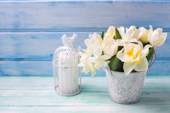 White daffodils and tulips  flowers in bucket and candle  on tur Royalty Free Stock Photo
