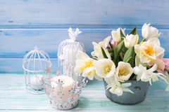 White daffodils and tulips  flowers in bucket and candles  on tu. Rquoise  painted wooden planks against blue wall. Selective focus Royalty Free Stock Photo