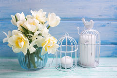 White daffodils and tulips  flowers in bucket and candles  on tu. Rquoise  painted wooden planks. Selective focus Royalty Free Stock Photos