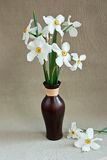 White daffodils in a vase Stock Photo