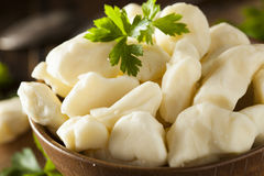 White Dairy Cheese Curds Royalty Free Stock Images