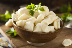 White Dairy Cheese Curds Royalty Free Stock Image
