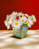 White daisies. Bouquet of white daisies in an old vase and red background Stock Photography