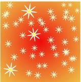 White daisies. Messy white daisies on an orange background Stock Image