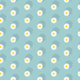 White daisies seamless pattern. On a blue background.Daisy field.flower chain Royalty Free Stock Photo