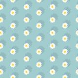 White daisies seamless pattern Royalty Free Stock Photo