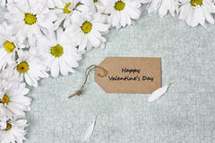 White Daisies and Valentines Card Stock Image