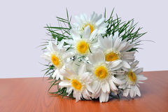 White daisy bouquet. Shasta Daisy bouquet - Leucanthemum x superbum. Fluffy white daisies, also called Crazy daisies, on the table stock photography