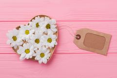 White daisy chamomile in heart shaped box. Blank tag label. Pink wooden background Royalty Free Stock Photo