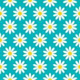 White daisy chamomile icon. Cute flower plant collection. Growing concept. Seamless Pattern Wrapping paper, textile vector illustration