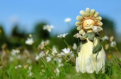 White Daisy Flower Field With Plush Toy during Daytime Stock Photography
