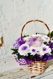 White daisy flowers in a basket Stock Photos