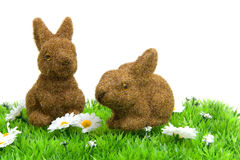 White daisy flowers with bunnies on grass. White little daisy flowers and brown bunnies on grass over white background Stock Images