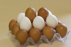 White and dark chicken eggs in a rack Stock Photos
