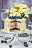 White and dark chocolate layer cake decorated with blueberries Royalty Free Stock Photos