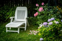 White deckchair and beautiful flowers in the home garden. Beautiful blooming flowers in the home garden, roses, hydrangeas, petunias stock photography