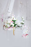 White decorative cage with beautiful flowers Stock Photo