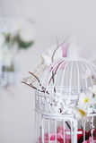 White decorative cage with beautiful flowers Royalty Free Stock Photo