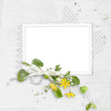 White delicate frame Royalty Free Stock Images