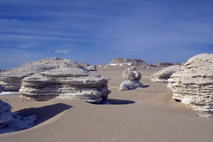 White desert. Stock Photography