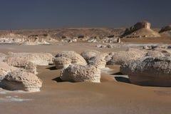 White desert landscape Royalty Free Stock Images