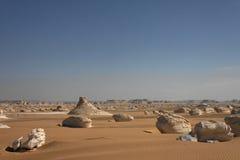 White desert landscape Royalty Free Stock Photography