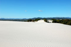 White desert sand Royalty Free Stock Photo