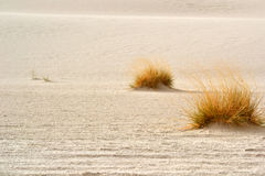White Desert Royalty Free Stock Photos