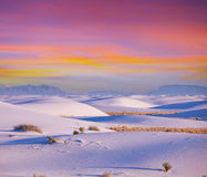 White desert Royalty Free Stock Photo