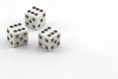 White dice. Stock Image
