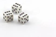 White dice. Stock Image