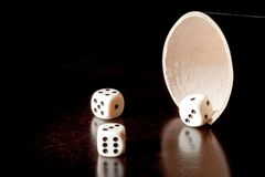 White dice near the container Stock Image