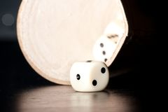 White dice on old wood black table near a container Stock Photo