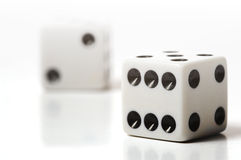White Dice on White Stock Photography
