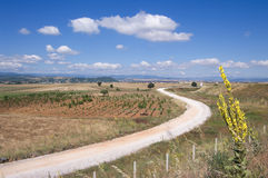 White Dirt Road Winding Royalty Free Stock Images