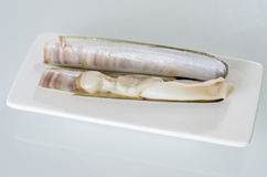White dish of grilled razor clams with lemon Stock Photography