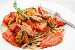 White dish with Pasta spaghetti , mussel and tomatoes. A white dish with Pasta spaghetti , mussel and tomatoes Royalty Free Stock Photography