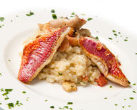 White dish with rice , red mullet fillets and seafood Royalty Free Stock Photography