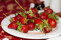 White dish with succulent juicy fresh ripe red strawberries Stock Photography