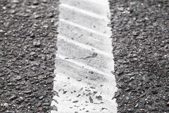 White dividung line and tire tracks Royalty Free Stock Image