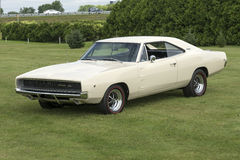 Dodge charger royalty free stock image