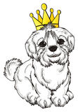 White dog in crown royalty free illustration