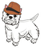 White dog in hat Royalty Free Stock Images